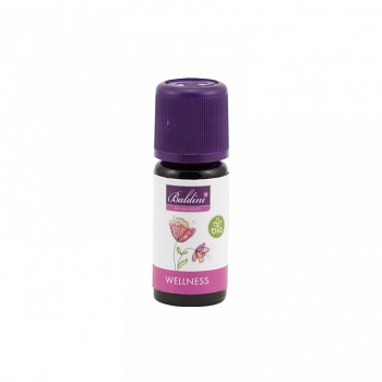 Taoasis bio směs éterických olejů Wellness - 10 ml