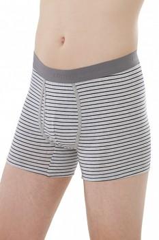 COMAZO EARTH Pánské boxerky s nohavičkami z biobavlny - šedomodrý proužek