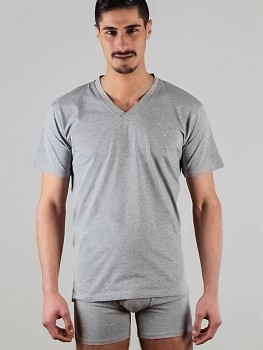 Albero pánské tričko s krátkými rukávy a výstřihem do V ze 100% biobavlny - šedá